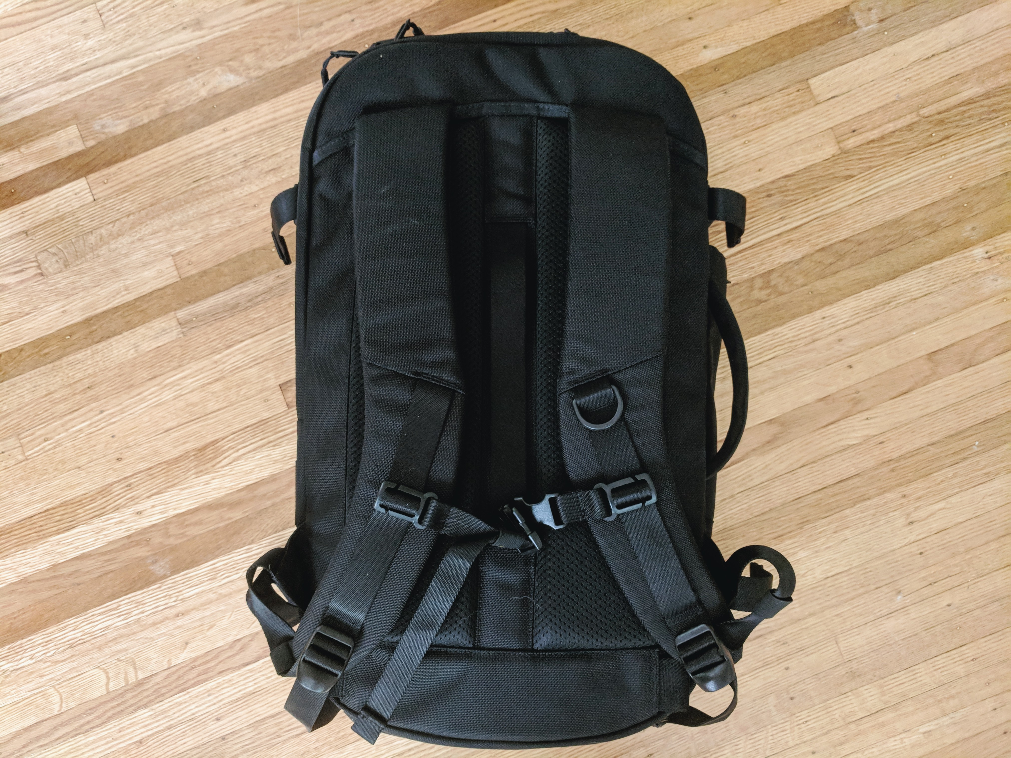 Aer Travel Pack 2 backpack review straps back panel view padding sternum strap